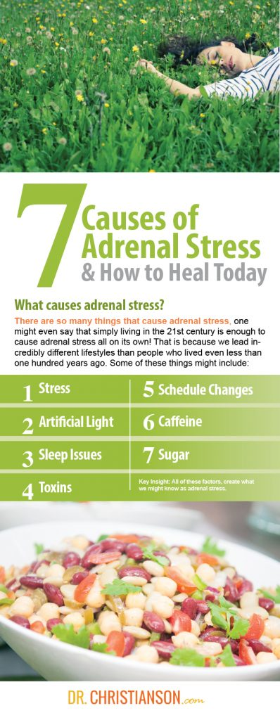 Dr Christianson Heal Your Adrenals